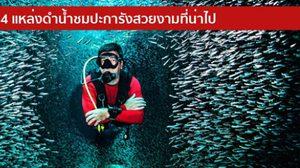 4 แหล่งดำน้ำ ชมปะการังสวยงามที่น่าไป