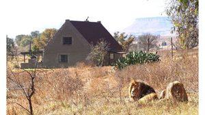 พาชม บ้านพักตากอากาศ พร้อมสิงโตเพื่อนบ้านกว่า 77 ตัว!