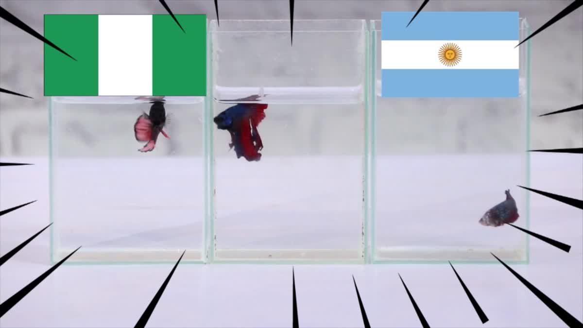 ซี้ซั้วเอามาเล่า ฟันธง ฟุตบอลโลก 2018 EP 11