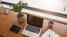 ทำงานแฮปปี้และมีสุขภาพดี! 4 เหตุผลดีดี ทำไมเราถึงควรตั้ง ต้นไม้ ไว้บนโต๊ะทำงาน