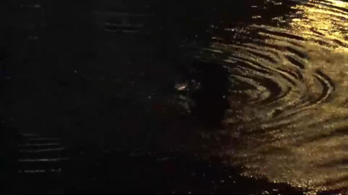 หนุ่มคลั่งมีดจี้คอเด็กชิงรถ จยย. ก่อนกระโดดลงคลองหนี