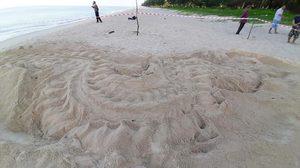 'เต่ามะเฟือง' ขึ้นวางไข่ที่หาดบ่อดาน จนท.กั้นคอกพร้อมตั้งศูนย์เฝ้าระวัง