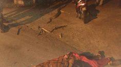 หนุ่มจับโคตรไอ้เหลือมแว๊นกลับบ้านหวังเอาไปขาย เคราะห์ร้ายถูกรัดตายกลางทาง