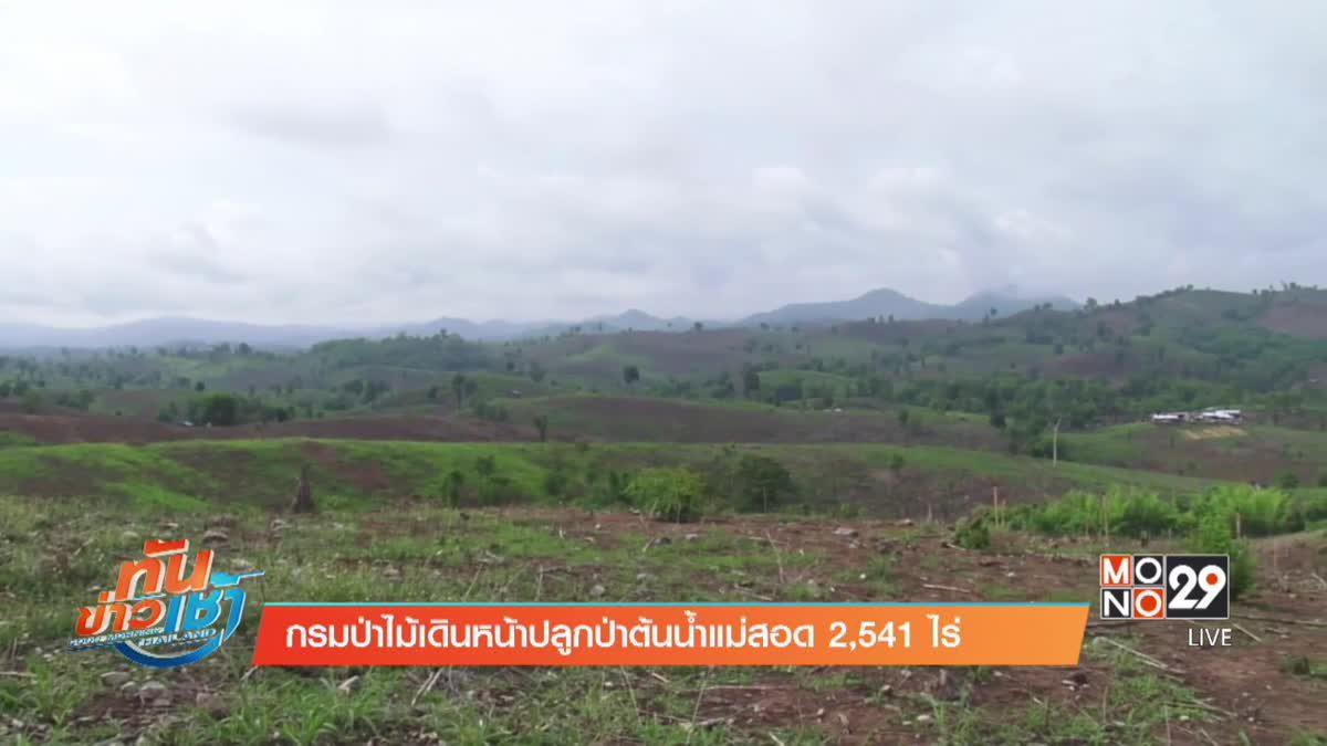 กรมป่าไม้เดินหน้าปลูกป่าต้นน้ำแม่สอด 2,541 ไร่
