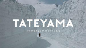 ทาเทยาม่า (Tateyama) เจแปนแอลป์ เปิดเส้นทาง ชมกำแพงหิมะ 15 เมษายนนี้