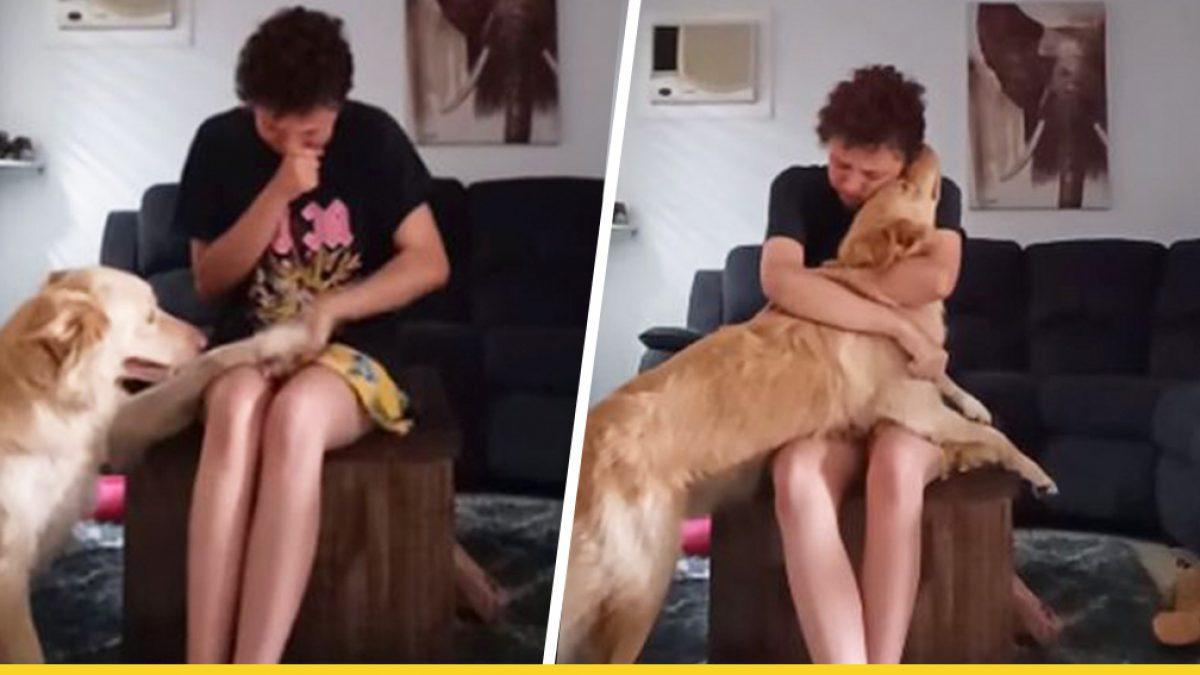 น้องหมาบริการช่วยเจ้านายสาวที่กำลังเผชิญกับภาวะแพนิคให้รู้สึกดีขึ้น ด้วยอ้อมกอดที่แสนอบอุ่น