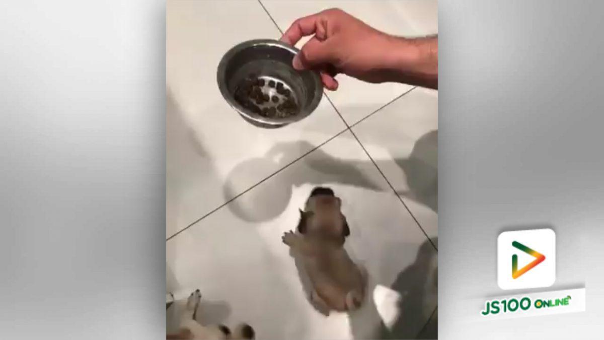 อะไรจะหิวมากขนาดนี้!! (14-5-61)