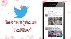 น่ารักไม่แพ้กัน! ดอกซากุระบน Twitter แค่กดไลค์ทวีต #Sakura