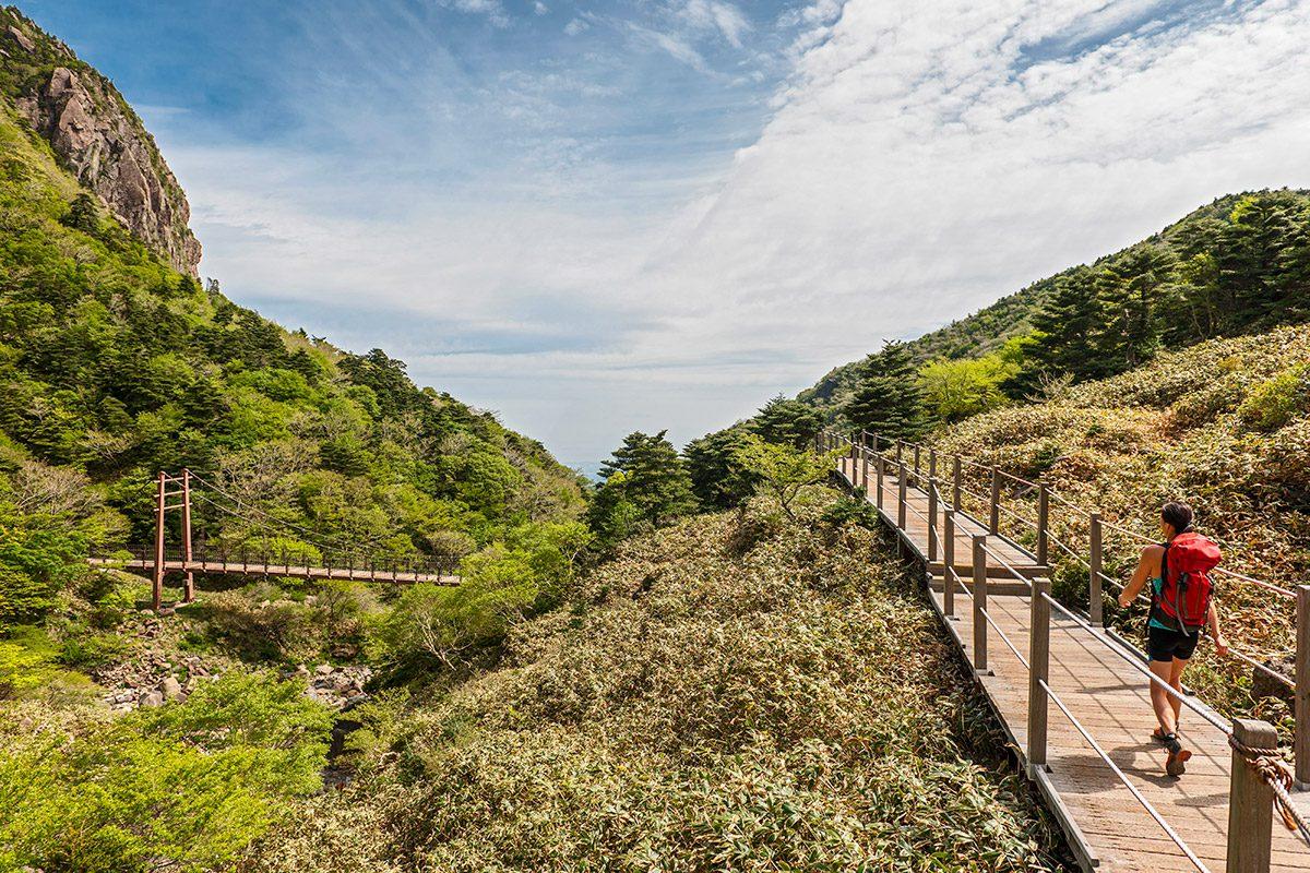 Gwaneumsa hiking trail to Hallasan on Jeju Island, Seogwipo