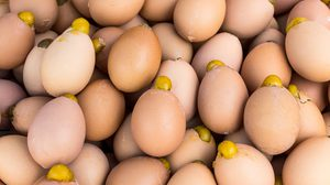 สูตร ไข่ปิ้งหรือไข่ทรงเครื่อง ทำเองฟินเอง