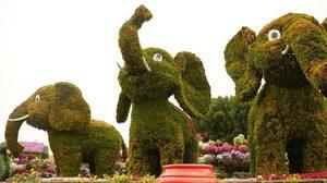 ข่าวดีพี่น้อง ปทุมธานี-สระบุรี-ลพบุรี เข้าฟรีสวนนงนุช