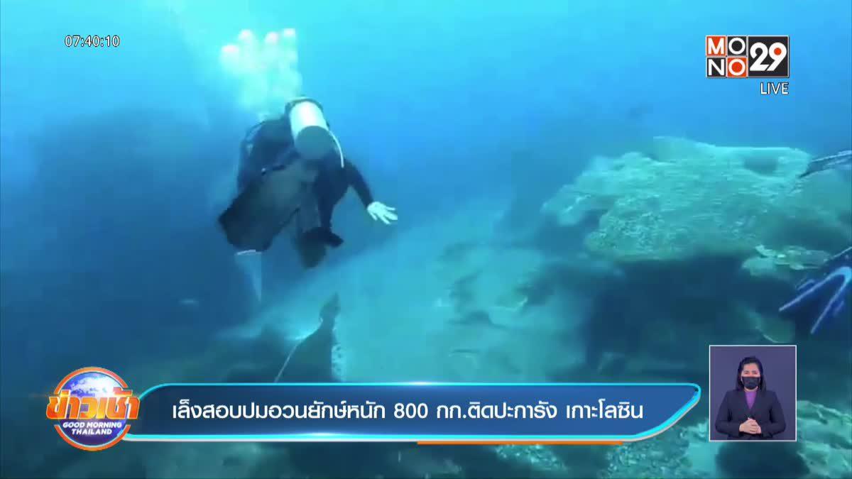 เล็งสอบปมอวนยักษ์หนัก 800 กก.ติดปะการัง เกาะโลซิน