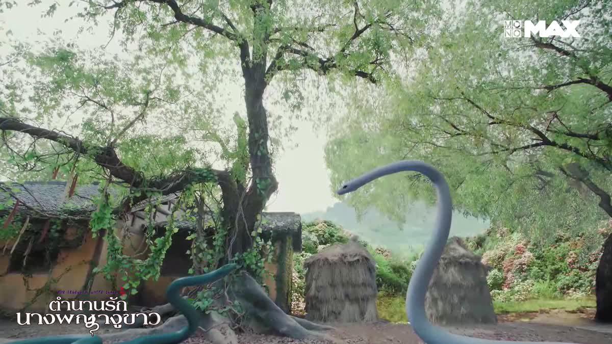 นางงูขาว ปะทะ นางงูเขียว | The Legend of White Snake ตำนานรักนางพญางูขาว