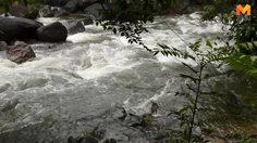 แจ้งเตือนพื้นที่เฝ้าระวังภัยดินถล่ม น้ำป่าไหลหลาก ระหว่างวันที่ 2 – 4 ตุลาคม