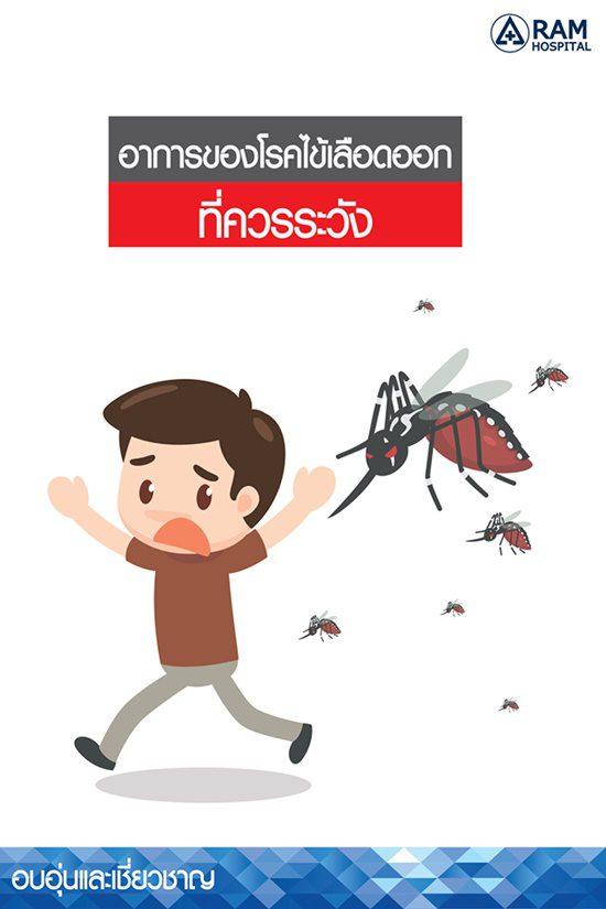 อาการของโรคไข้เลือดออกที่ควรระวัง!