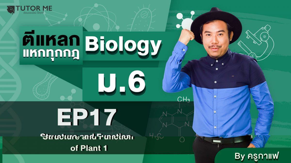 EP 17 Structure and Function of Plant 1