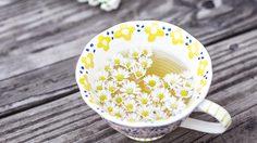 10 ประโยชน์ ชาดอกคาโมมายล์ - เครื่องดื่มสุขภาพ แนะนำสำหรับผู้หญิง