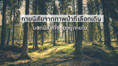 วันหนึ่งคุณเดินเข้าป่า! ทายนิสัยจากภาพป่าที่เลือกเดิน บอกนิสัยที่ซ่อนอยู่ภายใน