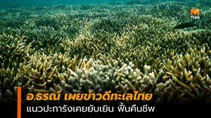 อ.ธรณ์ เผยข่าวดีทะเลไทย แนวปะการังเคยยับเยินฟื้นคืนชีพ