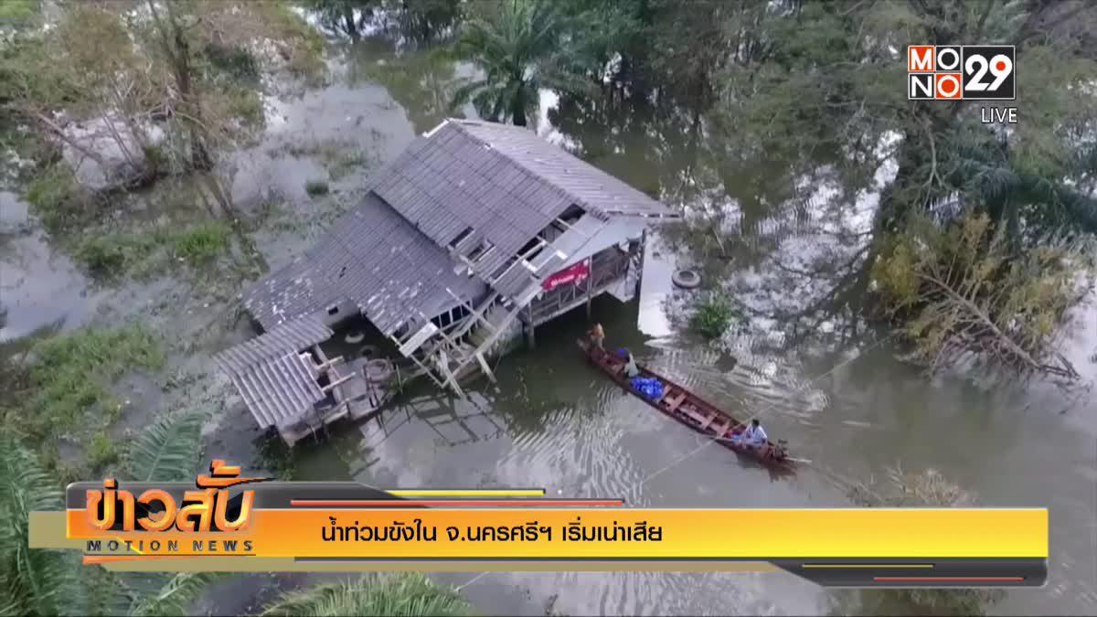 น้ำท่วมขังใน จ.นครศรีฯ เริ่มเน่าเสีย