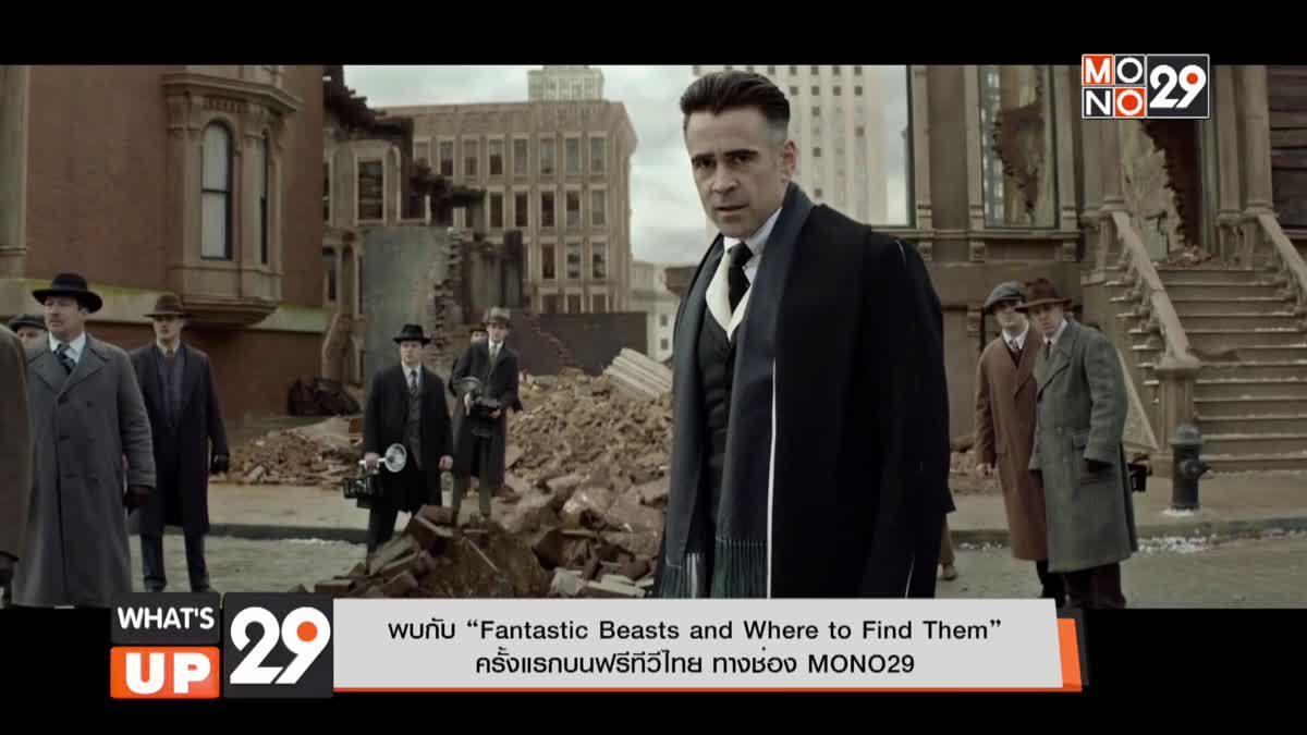 """พบกับ """"Fantastic Beasts and Where to Find Them"""" ครั้งแรกบนฟรีทีวีไทย ทางช่อง MONO29"""