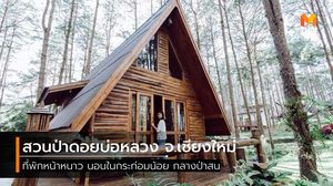 นอนในกระท่อมน้อย ใต้เงาสน ที่ สวนป่าดอยบ่อหลวง จ.เชียงใหม่