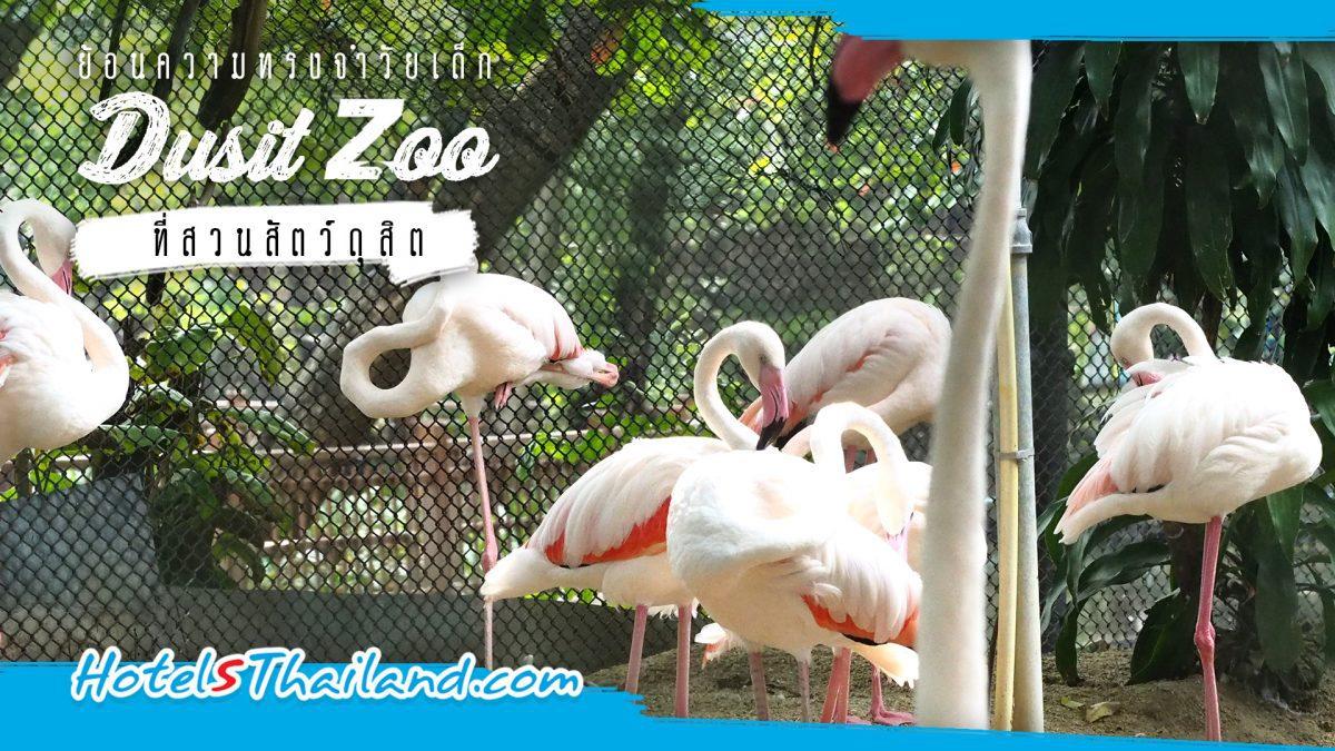 ย้อนความทรงจำวัยเด็กที่สวนสัตว์ดุสิต