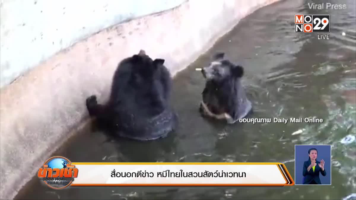 สื่อนอกตีข่าว หมีไทยในสวนสัตว์น่าเวทน่า