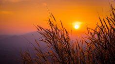 7 ที่เที่ยว วังน้ำเขียว แหล่งโอโซนบริสุทธิ์ อากาศดี แบบนี้ต้องไป!