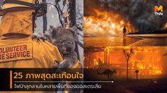 รวมภาพไฟนรกกำลังเผาไหม้ในหลายพื้นที่ของ ออสเตรเลีย ส่งผลให้สัตว์ป่าล้มตายกันเป็นว่าเล่น