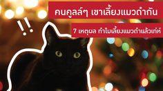 คนคูลล์ๆ เขาเลี้ยง แมวดำ - 7 เหตุผล ทำไมเลี้ยงแมวดำแล้วเท่ห์