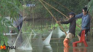 ชาวบ้านแห่หาปลาขายหลังน้ำท่วมหนัก สร้างรายได้สูงสุด 3,500 บาทต่อวัน