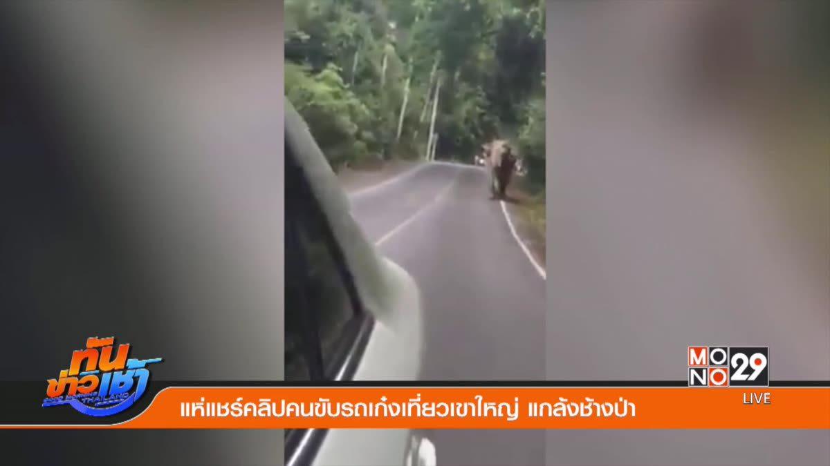 แห่แชร์คลิปคนขับรถเก๋งเที่ยวเขาใหญ่ แกล้งช้างป่า