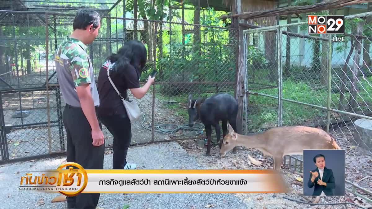 ภารกิจดูแลสัตว์ป่า สถานีเพาะเลี้ยงสัตว์ป่าห้วยขาแข้ง