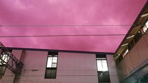 แปลกตา! ท้องฟ้าสีชมพู ก่อนพายุไต้ฝุ่นฮากิบิส ถล่มญี่ปุ่น