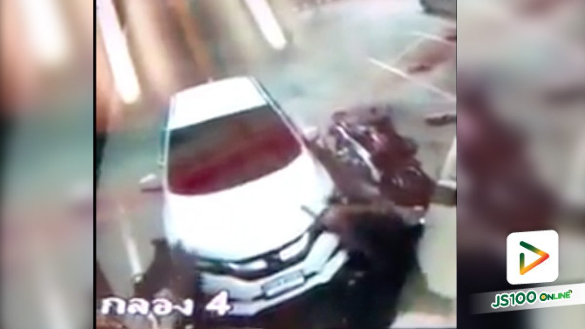 เจ้าของรถช็อกสุดขีด เจอสุนัข 6 ตัว รุมกัดรถพังกระจาย