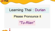 Learning Thai with Durian, Please Pronounce it Tu-Rian