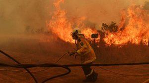 ออสเตรเลียเกิดเหตุไฟป่ารุนแรง (ภาพชุด)