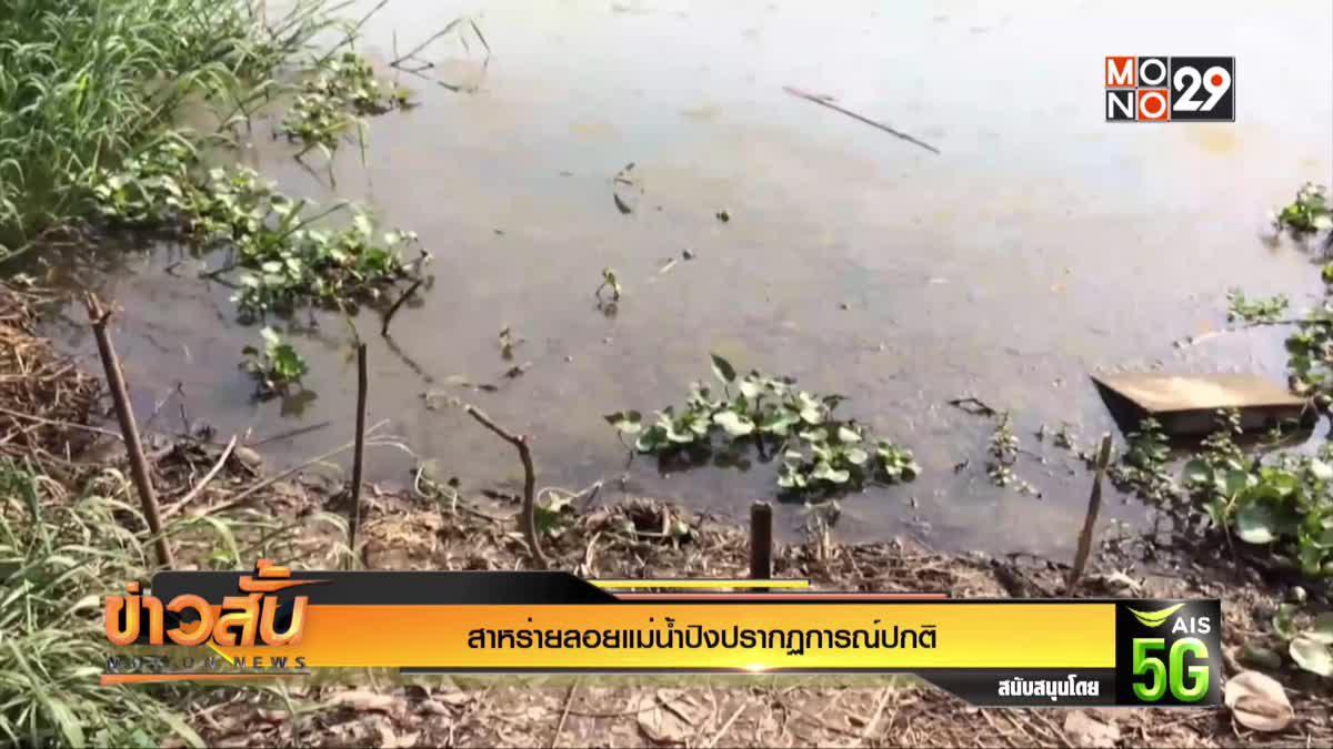 สาหร่ายลอยแม่น้ำปิงปรากฏการณ์ปกติ