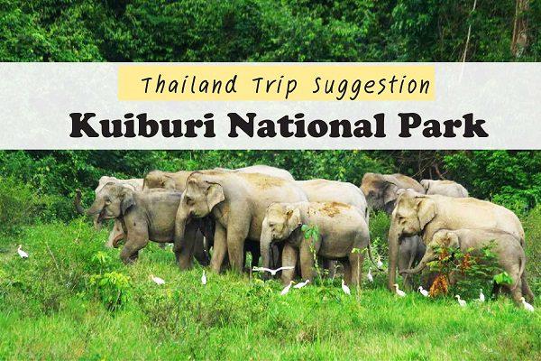 Thailand Trip Suggestion : Kuiburi National Park