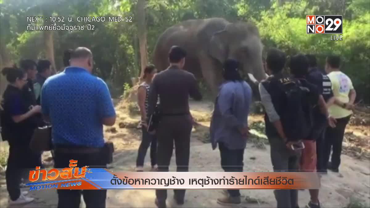 ตั้งข้อหาควาญช้าง เหตุช้างทำร้ายไกด์เสียชีวิต