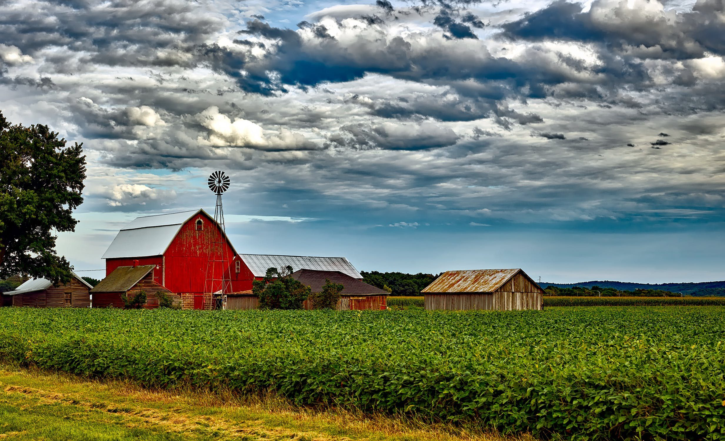 farm = ฟาร์ม,ไร่