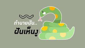 ฝันเห็นงู - ทำนายฝันเกี่ยวกับงู ทำนายอะไรได้บ้าง ใช่ว่าจะเจอเนื้อคู่เสมอไป