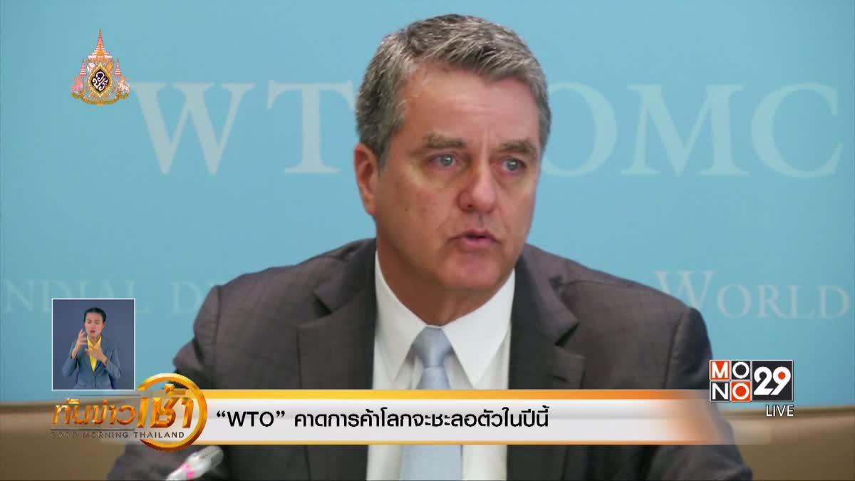 """""""WTO"""" คาดการค้าโลกจะชะลอตัวในปีนี้"""