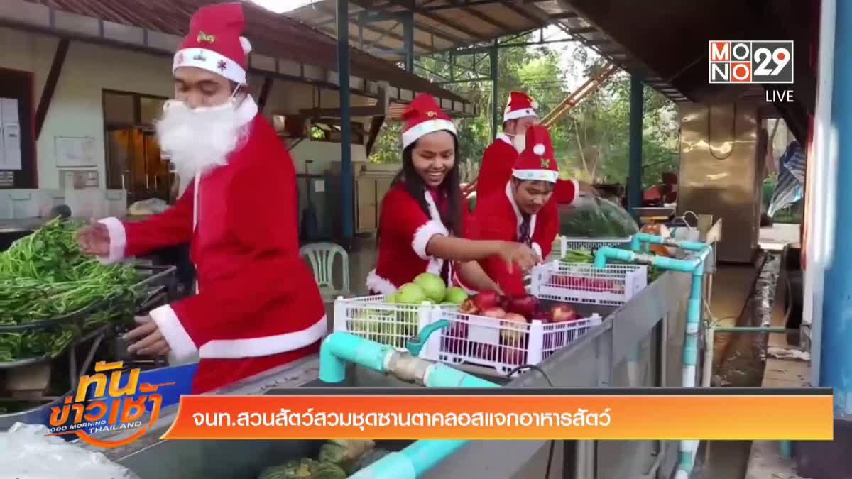จนท.สวนสัตว์สวมชุดซานตาคลอสแจกอาหารสัตว์