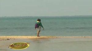 เปิดตัว! ทะเลแหวกระยอง แหล่งท่องเที่ยวใหม่ที่ต้องไปเยือน!