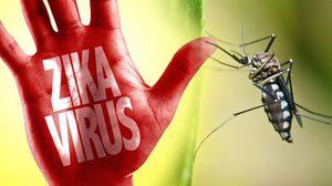 กทม. ขออย่าตระหนก หลังพบผู้ป่วยไวรัสซิกา 21 ราย!