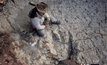 พบรอยเท้าไดโนเสาร์ขนาดยักษ์ในโบลิเวีย