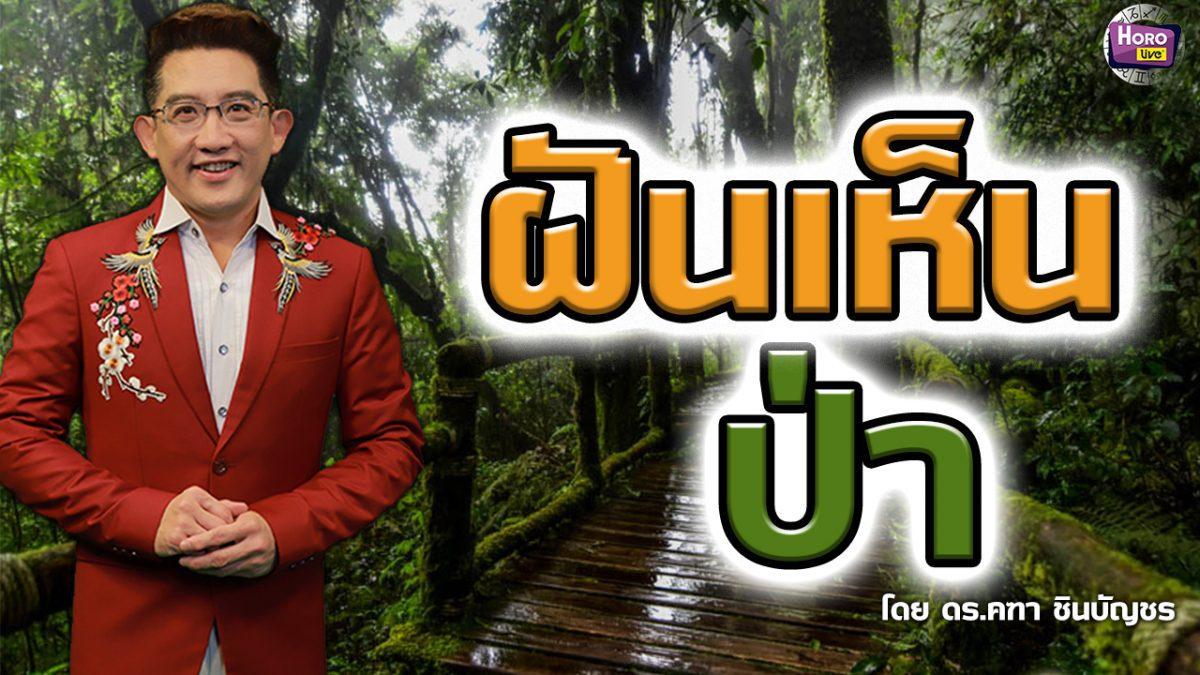 ทำนายฝัน ฝันเห็นป่า l ดร.คฑา ชินบัญชร