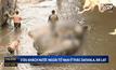3 นักท่องเที่ยวอังกฤษตกน้ำตกดับในเวียดนาม